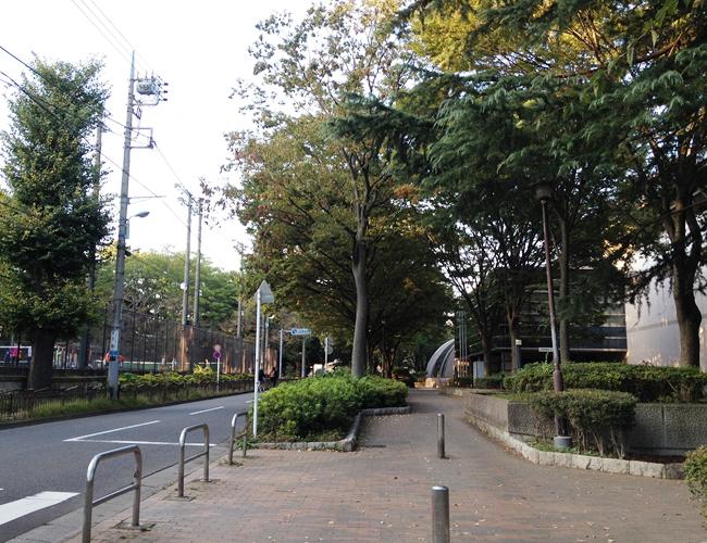 都立城北公園と上板橋体育館のある道