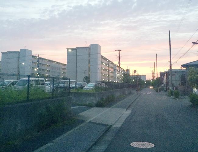 足立区の都営団地通り(花畑交番の裏通り)