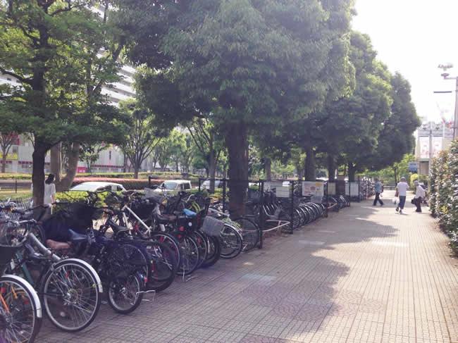 自転車が多い