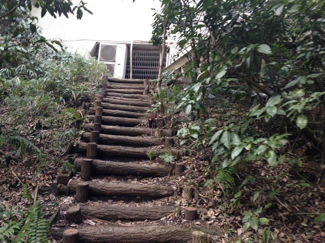 階段を上ってみる