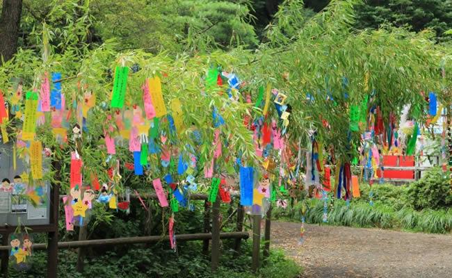 石神井公園の七夕