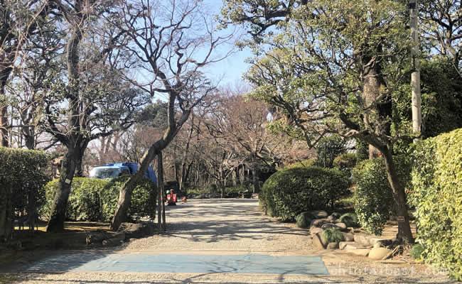 少し脇道に入ると緑溢れる旧朝倉家住宅があります。
