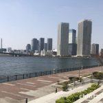 豊洲公園は海と緑と太陽が眩しいです。