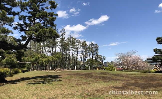 鵜の木松山公園は眺望良い芝生広場が広がります。