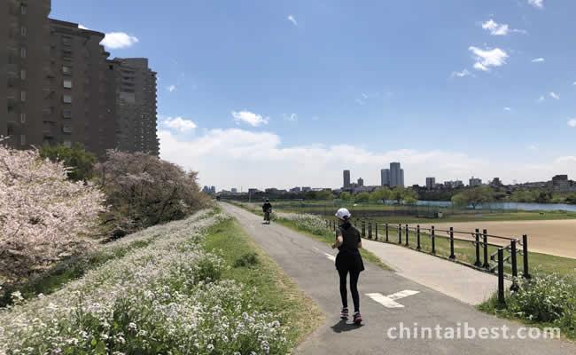 多摩川沿いの歩道はランニングに最適です。