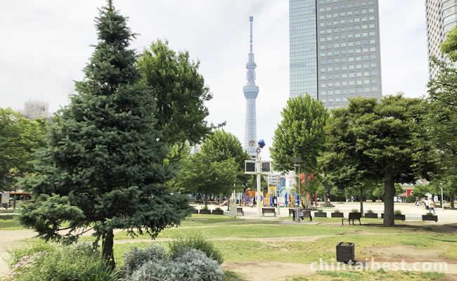 錦糸町公園から見えるスカイツリー