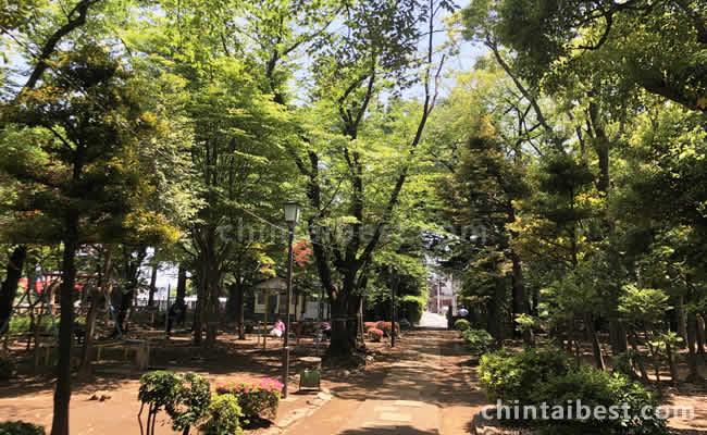 西日暮里公園の緑溢れたオアシス