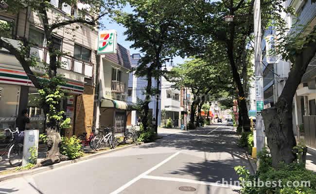 桜並木の道