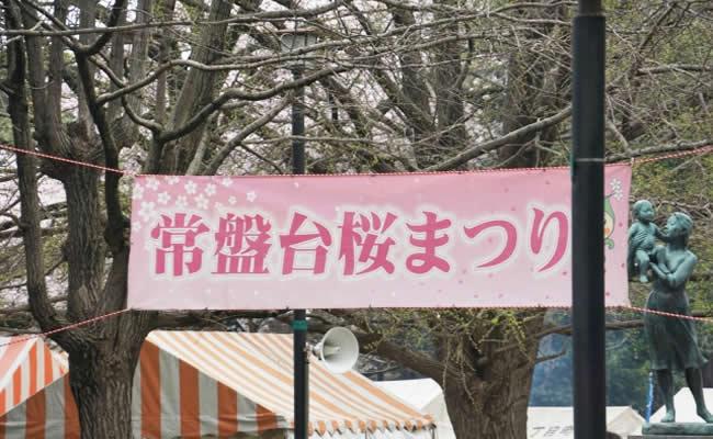 常盤台の桜まつり