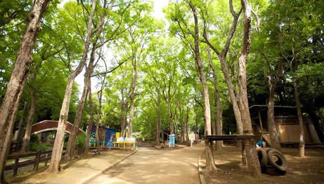 公園の一区画を利用した冒険遊び場